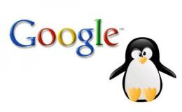 5 Tips to Surviving Google Penguin